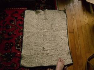 Rug Blanket 1