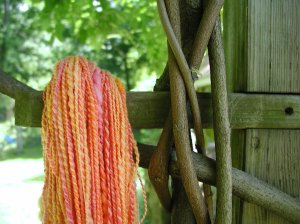 Grapefruit Yarn